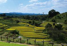 太子町・河南町・千早赤阪村からなる南河内郡は、自然と歴史の宝庫!!