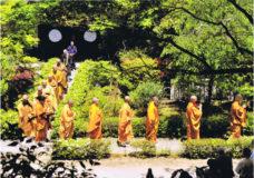 延命寺 青葉祭
